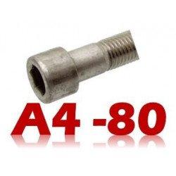 Vis métaux (BTR) INOX A4- 80 hexagonale creuse DIN 912 type CHC